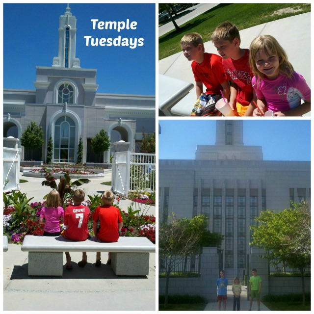 temple tuesdays