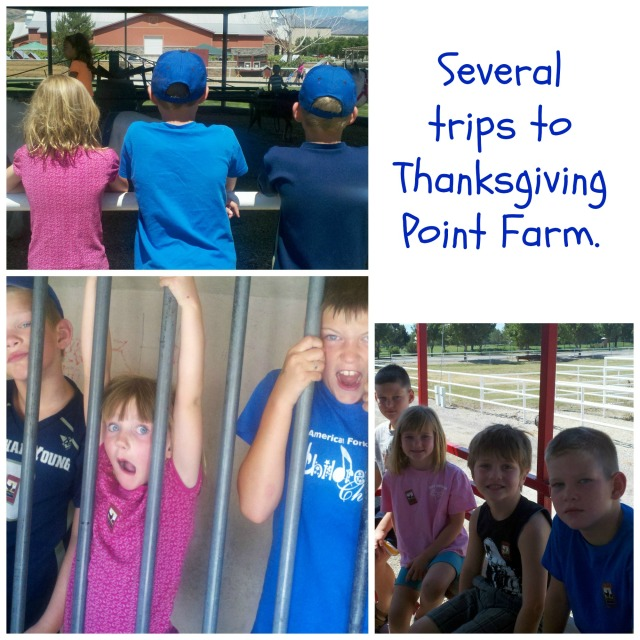 TG point farm
